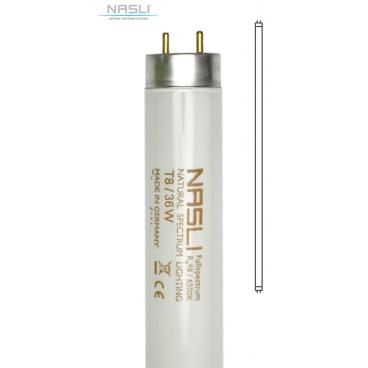 Plnospektrální trubicová zářivka NASLI, FT36T8 (36 W)